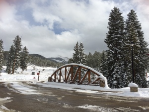 Winter Park The Day before opening.